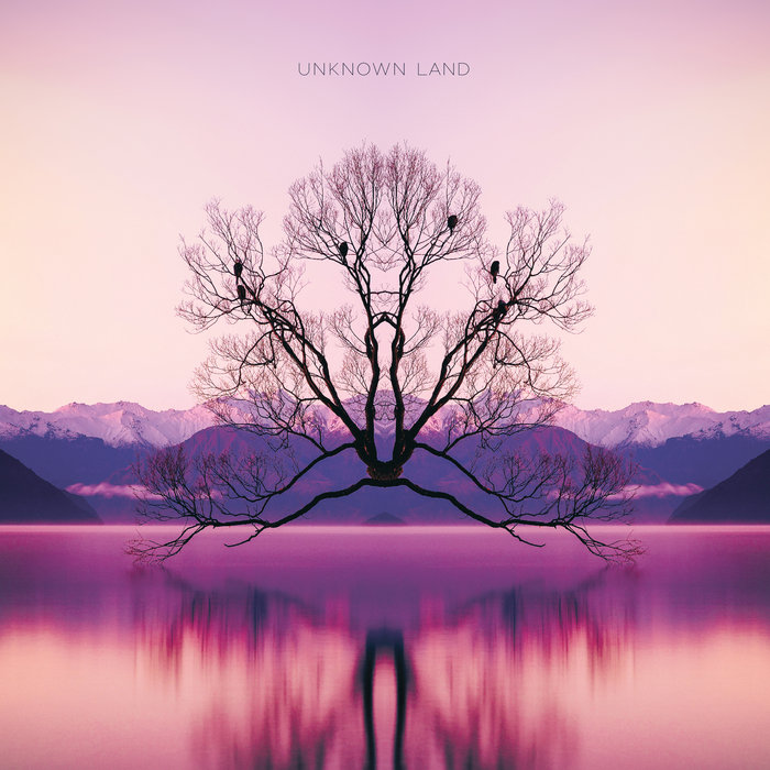unknown-land-moonlight